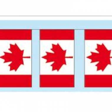 Papieren vlaggenlijn Canada
