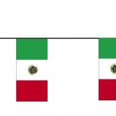 Papieren vlaggenlijn mexico