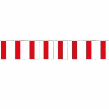 Papieren vlaggenlijn Polen