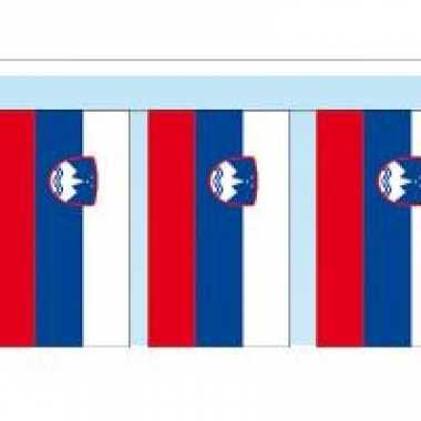 Papieren vlaggenlijn slovenie