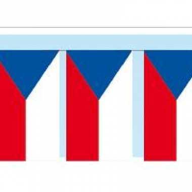 Papieren vlaggenlijn tsjechie