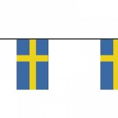 Papieren vlaggenlijn Zweden