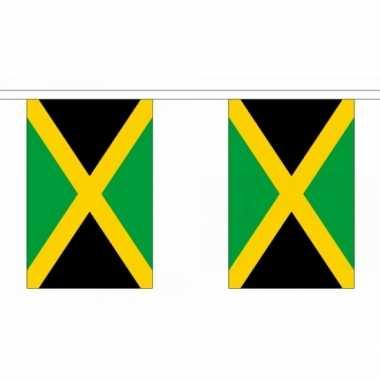 Polyester jamaica vlaggenlijn