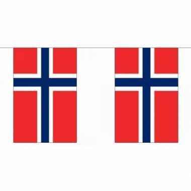 Polyester Noorwegen vlaggenlijn