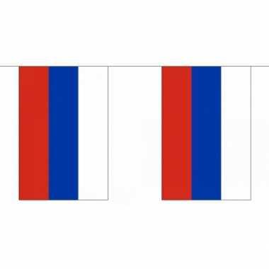 Polyester Rusland vlaggenlijn