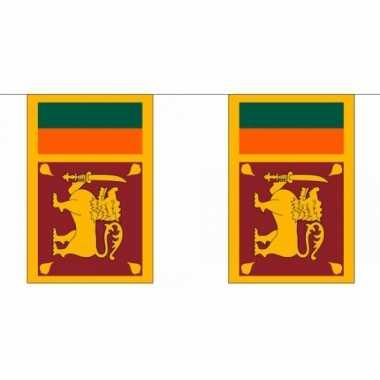 Polyester Vlaggenlijn Sri Lanka