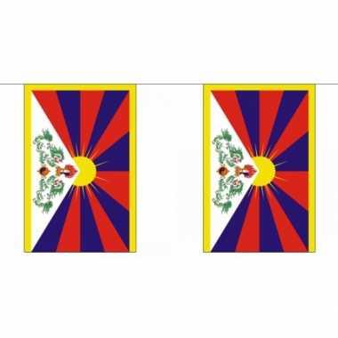 Polyester vlaggenlijn tibet 9 m
