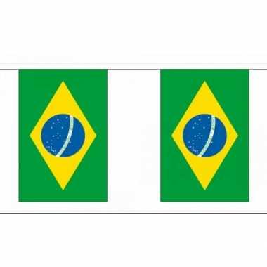 Polyester vlaggenlijn van brazilie