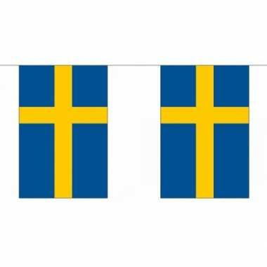 Polyester vlaggenlijn Zweden