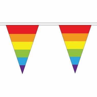 Regenboog vlaggetjes van stof 5 m