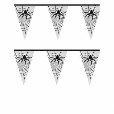Spinnenweb versiering 6 meter