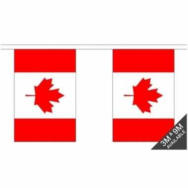 Stoffen vlaggenlijn canada 3 meter