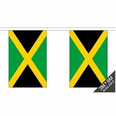 Stoffen vlaggenlijn jamaica 3 meter