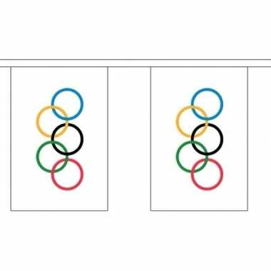 Stoffen vlaggenlijn slinger olympische vlag 3 meter