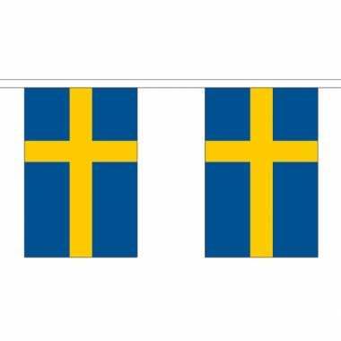 Stoffen vlaggenlijn zweden 3 meter