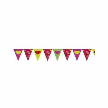 Valentijn vlaggenlijn 4 meter
