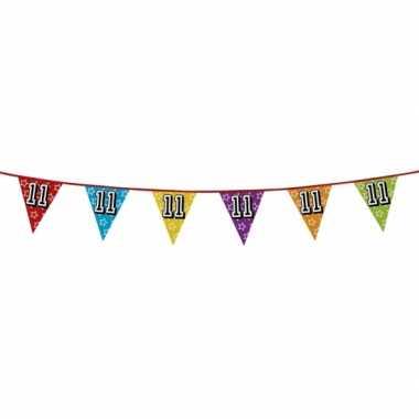 Vlaggenlijn 11 jaar feestje