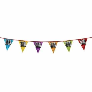 Vlaggenlijn 18 jaar feestje