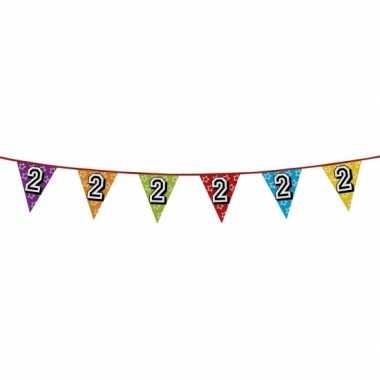 Vlaggenlijn 2 jaar feestje
