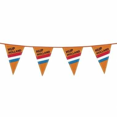 Vlaggenlijn 40m hup nederland
