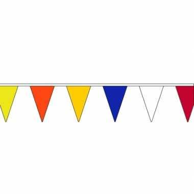 Vlaggenlijn met verschillende kleuren