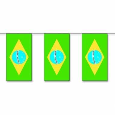 Vlaggenlijnen Brazilie 5 meter