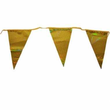 Vlaggenlijnen goud 3 meter