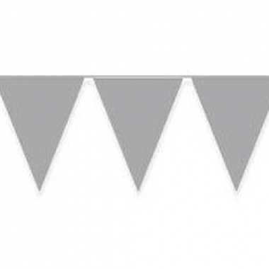 Vlaggenlijnen zilver kleurig 10 m