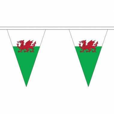 Wales vlaggenlijn van stof 5 m