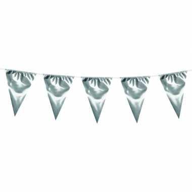 Xxl zilverkleurige vlaggenlijn 10 meter