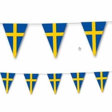 Zweedse vlaggenlijn 3,5 meter