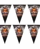 2x halloween feest vlaggenlijnen pompoen 250 cm