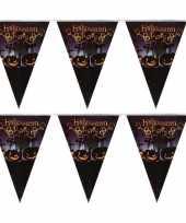 2x halloween feest vlaggenlijnen pompoenen 250 cm