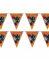 2x stuks grote oranje leeuw vlaggenlijnen 15 meter