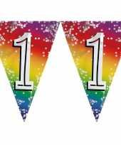 2x stuks vlaggenlijn 1 jaar versiering vlaggetjes slinger 6 meter
