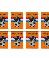 2x stuks vlaggenlijnen vlaggetjes oranje holland voetbal thema 10 meter