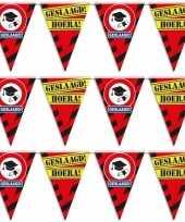 3x geslaagd afgestudeerd puntvlaggenlijn slinger waarschuwingsbord 10 meter feestversiering