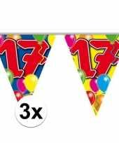 3x vlaggenlijn 17 jaar 10 meter