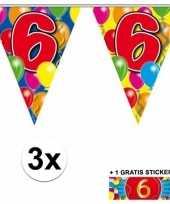6 jaar vlaggenlijnen 3x met gratis sticker