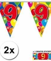 9 jaar vlaggenlijnen 2x met gratis sticker