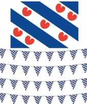 Friesland decoratie pakket met vlag en 4 vlaggenlijnen