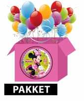Minnie mouse party pakket